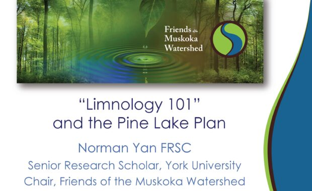 Limnology 101 and the Pine Lake plan